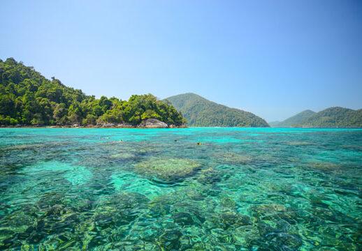 Surin Islas